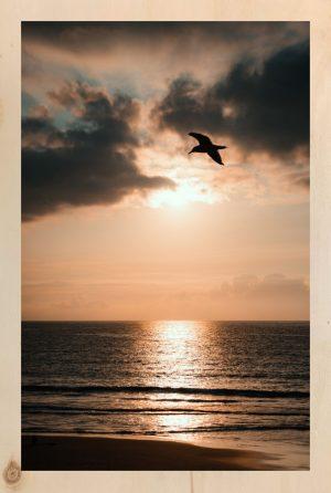 Sunset tableau